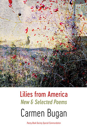 carmen-bugan-lilies-from-america-new-and-selected-poems